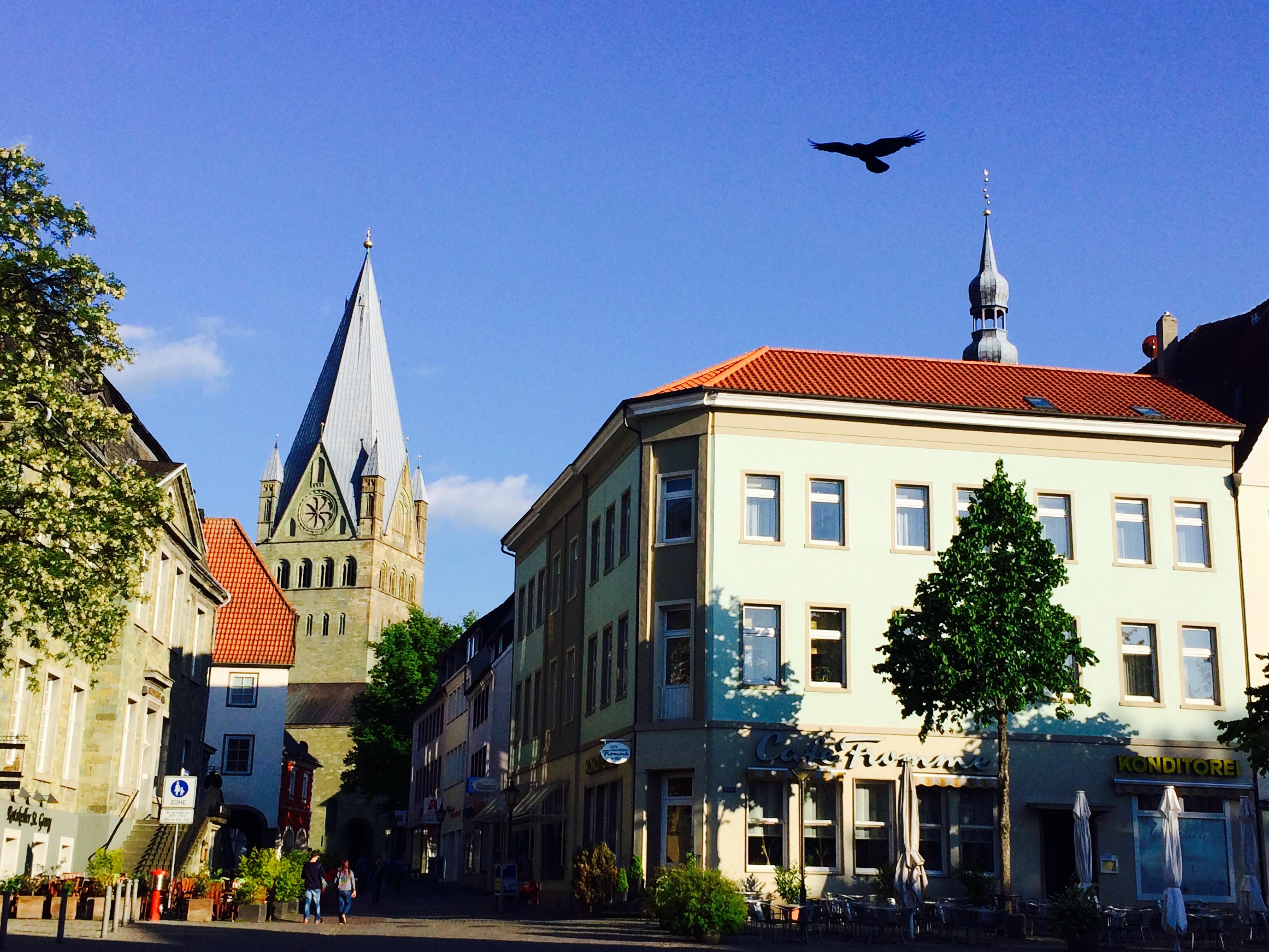 Soest Marktplatz mit Vogel