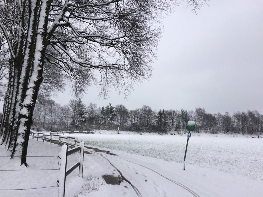 Haus Stallmeister im Schnee Eichen, Feldweg Wanderweg