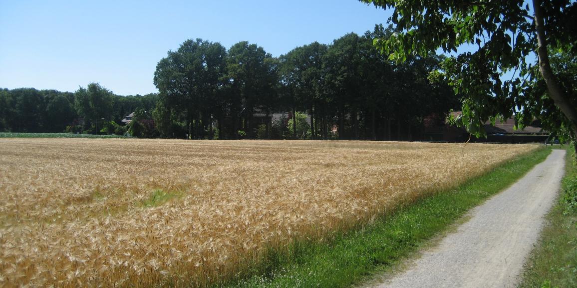 Römer Lippe Route