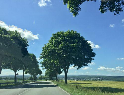 Motorradstrecken rund um Hotel Haus Stallmeister bei Lippstadt