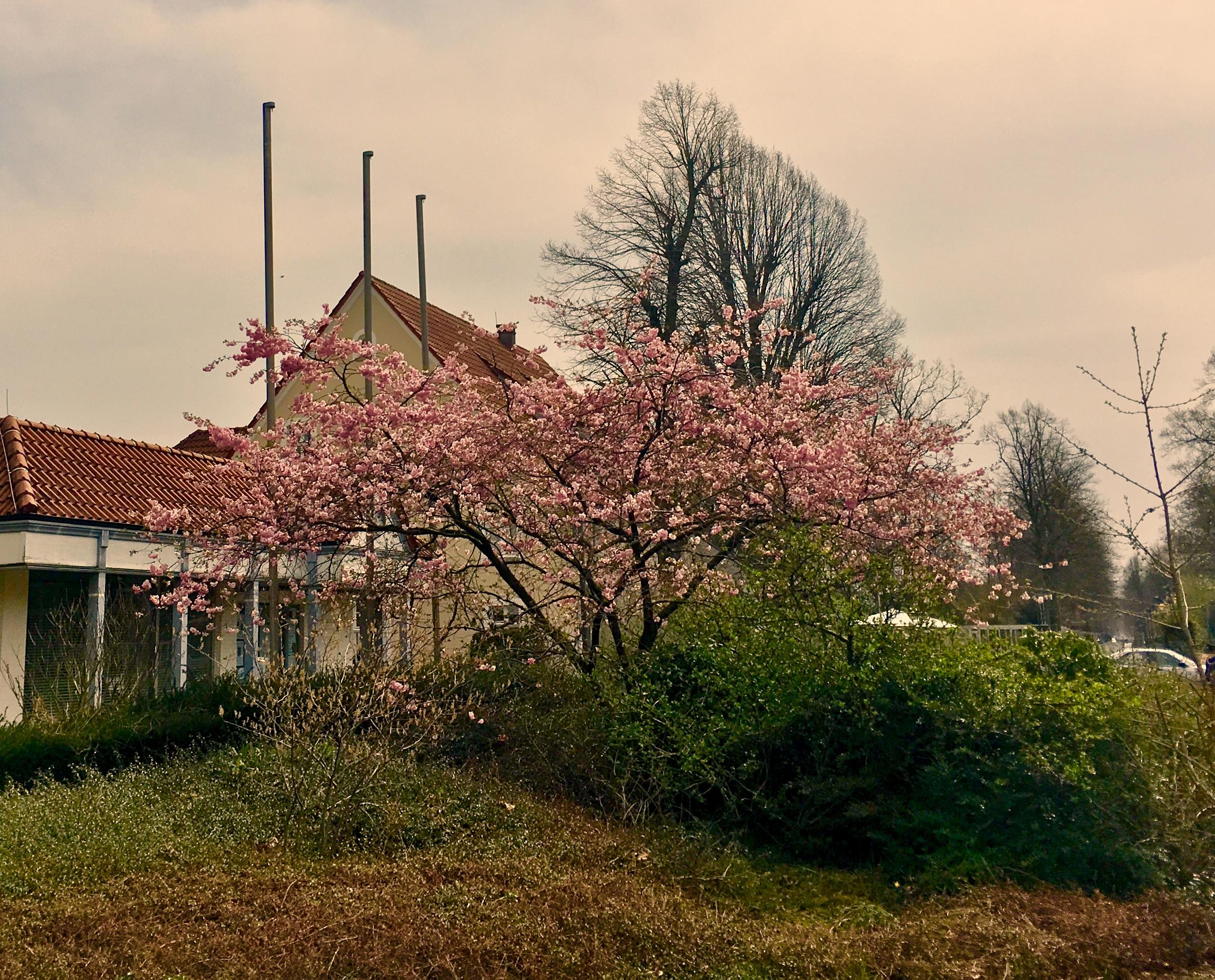 Termine Mai 2018 Lippstadt - Kultur Veranstaltungen Mai Lippstadt in der Nähe vom Hotel