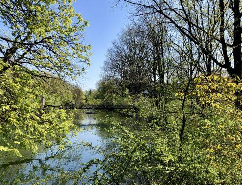 Termine März – Lippstadt 2020 in der Nähe vom Haus Stallmeister