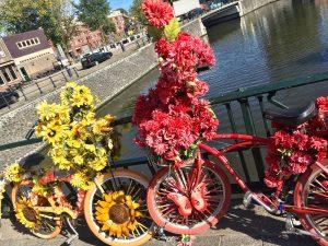 Fahrradroute Wasser Wege Winkel Fahrradfahrer Fahrrad Hotel Haus Stallmeister Lippstadt