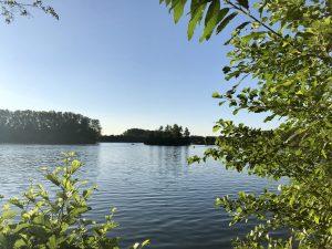 See, Bäume, blauer Himmel in Lippstadt. See in der Nähe der Pension Haus Stallmeister